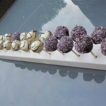 cakepops 8